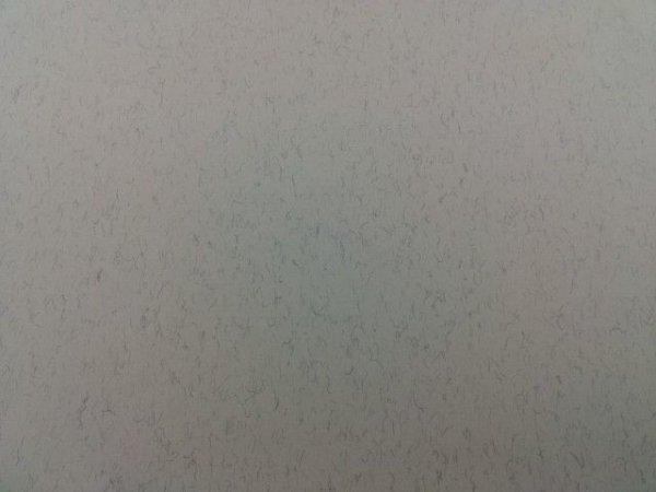 画像1: 毛入り表紙(A3) (1)