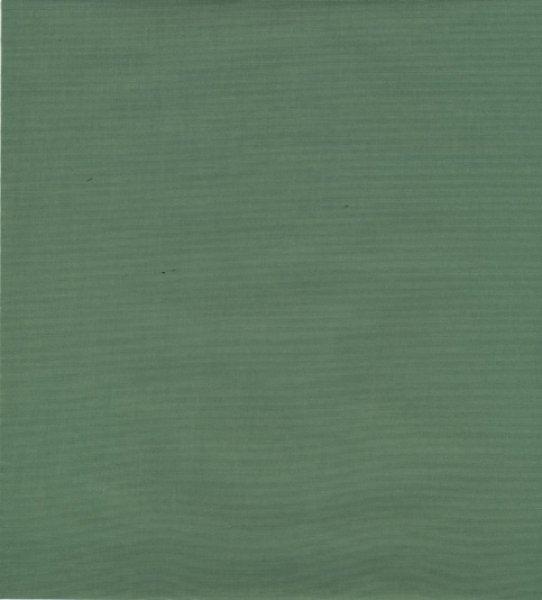 画像1: 若草色300×400 (1)